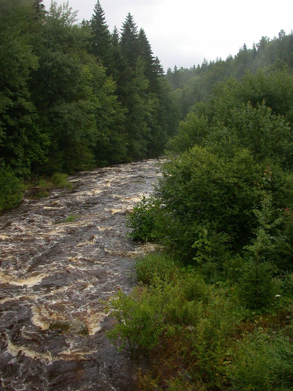 Webkamera - Kořenov - Jizera